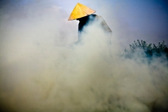A farmer burning off crop residue to prepare for the post-flood planting season in Hanoi, Vietnam.